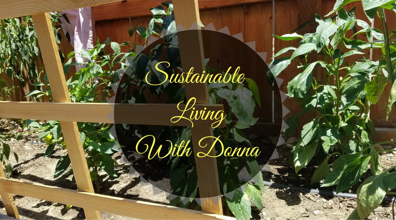 Sustainable LivingWith Donna (1)-1.png