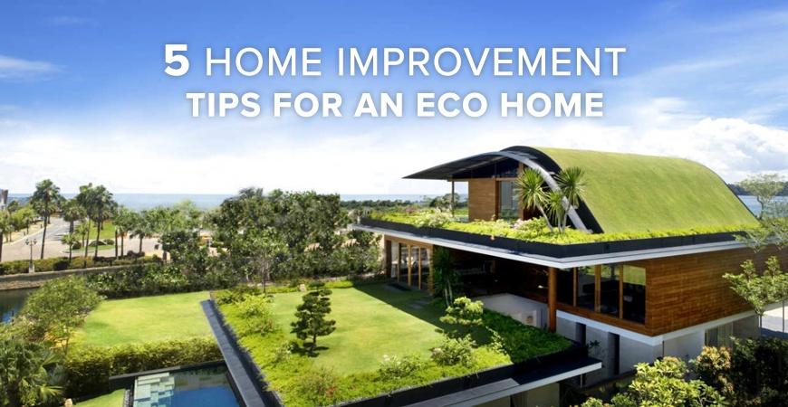 pkms-blog-5-home-improvement-tips-eco copy.jpg